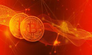 XRP-Ökosystem laut Bitcoin Trader